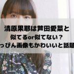 清原果耶は芦田愛菜と似てるor似てない?すっぴん画像もかわいいと話題!