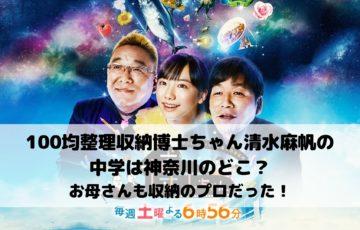 100均整理収納博士ちゃん清水麻帆の中学は神奈川のどこ?お母さんも収納のプロだった!