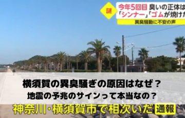 横須賀の異臭騒ぎの原因はなぜ?地震の予兆のサインって本当なの?